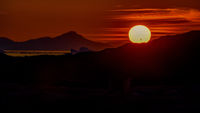 a large yellow disk of the setting sun above the horizon