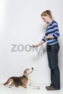 Gehorsamsübung eines Hundes
