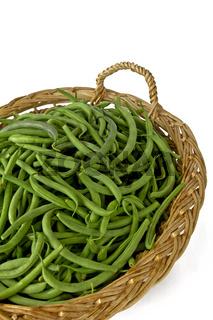 Grüne Bohnen - phaseolus vulgaris