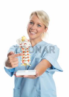 krankenschwester hält wirbelsäulenmuster
