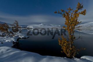 Vollmondnacht im Tal Doeralen, Rondane Nationalpark, Oppland