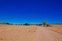 Landschaft im Kgalagadi-Transfrontier-Nationalpark, Südafrika | Landscape at Kgalagadi Transfrontier National Park, South Africa