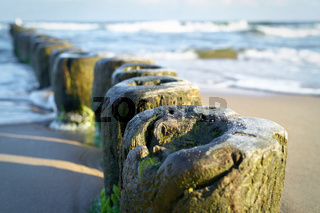 Wellenbrecher am Strand der Ostsee