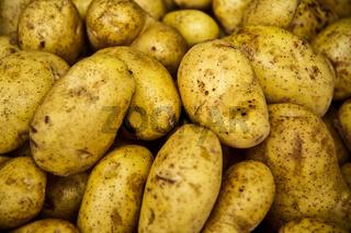 Marabell Kartoffel