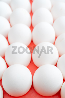 White chicken eggs. Useful food product. Straight rows of eggs.