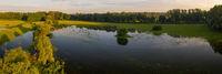 Flooded riparian zone in Moravia river inundation, Zahorie area, Slovakia