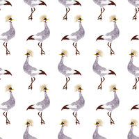 Watercolor crane pattern