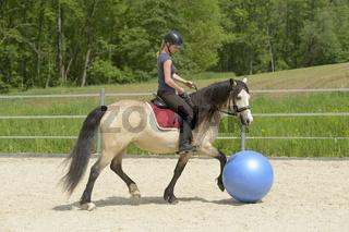 Pferdefußball / Horse soccer