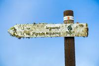 Mit Flechten überzogener Wander-Wegweiser auf der Insel La Gomera