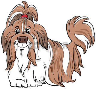 Shih Tzu purebred dog cartoon illustration
