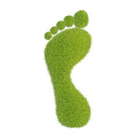 Ecological footprint concept illustration. Grass patch footprint