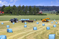 Stacking Silage on Trailer with Telehandler