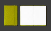 Olive green closed and open notebooks isolated on black