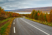 View along the road for Lagarfljot river, Iceland