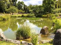 See im Schlosspark, Sommer