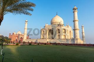 Taj Mahal view from the green garden, India, Agra