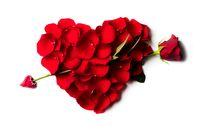 Rose petals heart with arrow