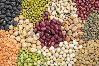 bean, lentils and pea abstract