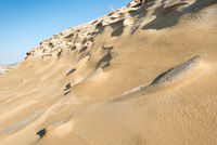 Dry desert land with sand dunes.