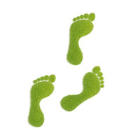 Ecological footprint concept illustration. Grass patch footprint walk.