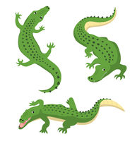 Green alligators set wild animal vector isolated
