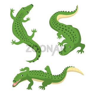 Green alligators set wild animal vector isolated