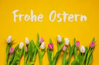 Colorful Tulip, Text Frohe Ostern Means Happy Easter, Yellow Background