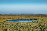 Landschaft auf Amrum