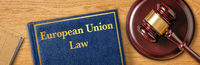 A gavel with a law book - European Union Law