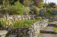 idyllic garden scenery