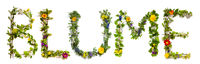 Flower And Blossom Letter Building Word Blume Means Flower