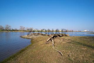 Der Fluss Elbe bei Magdeburg