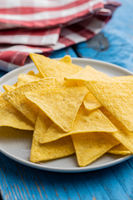 Salted tortilla chips.