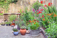 Ornamental garden with colorful plants in flowerbed and wooden table