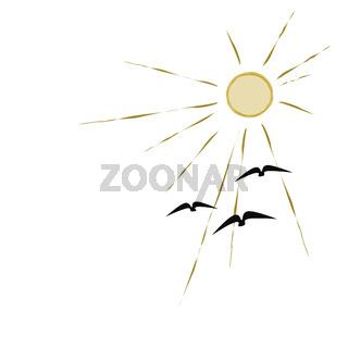 birds flying to the sun