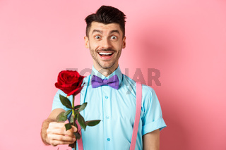 Valentines day and romance concept. Happy smiling man giving you red rose on romantic date, standing on pink background in bow-tie and shirt