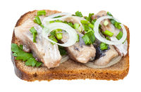 open sandwich salted herring and onion isolated