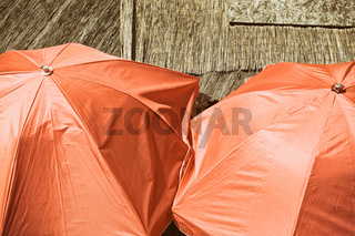High angle view of orange colored umbrellas