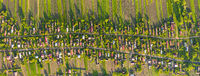 Birds eye view of traditional village, Ukraine. Many huts among the green trees, well-groomed farmland nearby, dirt roads stretch along the village. Aerial drone view of scenic countryside from top