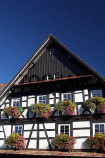 fachwerkhaus im schwarzwald.jpg