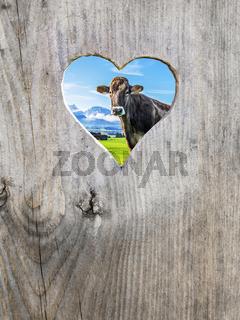 heart in door with cow