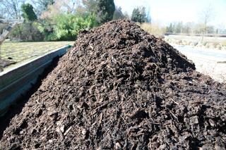 Kompost, Compost