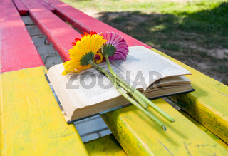 Old book and flowers on park bench