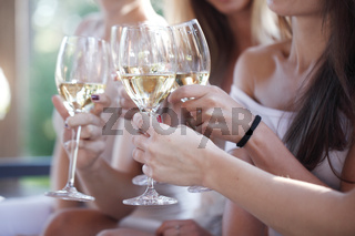 Female friends toasting wine