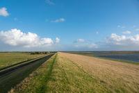 Küstenlandschaft mit Hochwasserdamm bei Westerhever | Coastal landscape with flood embankment near Westerhever