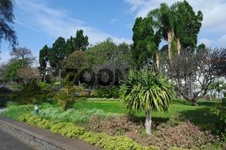 Madeira, Santa Catarina Park in Funchal
