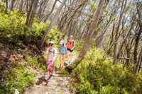 Mount Buller Walking and Biking Trails in Summer