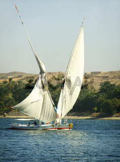 Felucca boats sailing on the Nile river