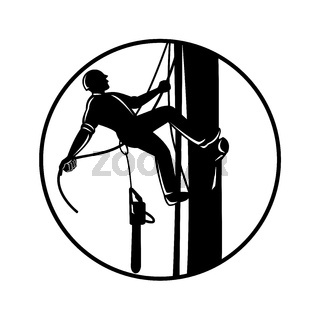 Arborist Climbing Up Tree With Chainsaw in Circle Retro Woodcut Black and White