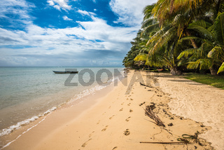 tropical island - sea, sky and palm trees